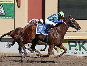 Wine Police wins the Remington Park Sprint Cup.