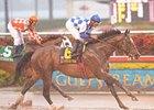 "Buddy's Humor takes the Pan American over a stubborn Presious Passion.<br><a target=""blank"" href=""http://www.bloodhorse.com/horse-racing/photo-store?ref=http%3A%2F%2Fpictopia.com%2Fperl%2Fgal%3Fprovider_id%3D368%26ptp_photo_id%3D7930022%26ref%3Dstory"">Order This Photo</a>"
