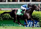 "Woodford Reserve winner Einstein finished 2nd in the Stephen Foster.<br><a target=""blank"" href=""http://www.bloodhorse.com/horse-racing/photo-store?ref=http%3A%2F%2Fpictopia.com%2Fperl%2Fgal%3Fprovider_id%3D368%26ptp_photo_id%3D4388074%26ref%3Dstory"">Order This Photo</a>"