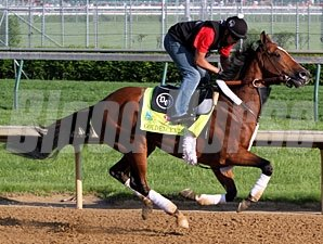 Goldencents - Churchill Downs, May 1, 2013.