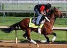 Goldencents 5-1 Derby Fave in Early Wagering