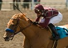 "Evita Argentina will carry 120 pounds in the Santa Monica.<br><a target=""blank"" href=""http://www.bloodhorse.com/horse-racing/photo-store?ref=http%3A%2F%2Fpictopia.com%2Fperl%2Fgal%3Fprovider_id%3D368%26ptp_photo_id%3D8341998%26ref%3Dstory"">Order This Photo</a>"