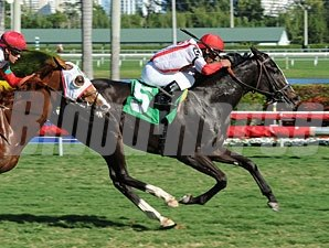 News Pending - Maiden Win, December 22, 2011.