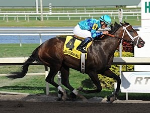 Live Lively wins the 2013 Davona Dale.