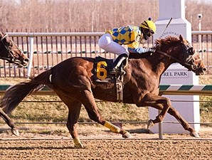 Dynamic Strike wins the 2013 Miracle Wood Stakes.
