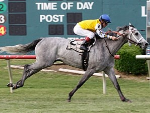 Sheer Beauty wins the 2011 Irving Distaff.
