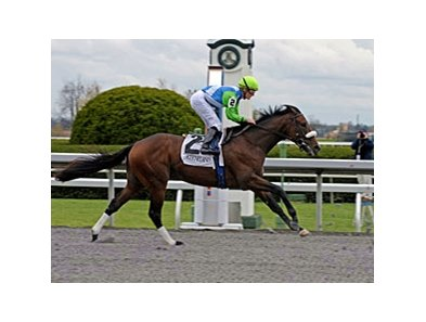"Lentenor finished 3rd in his debut at Keeneland on Oct. 31.<br><a target=""blank"" href=""http://www.bloodhorse.com/horse-racing/photo-store?ref=http%3A%2F%2Fpictopia.com%2Fperl%2Fgal%3Fprovider_id%3D368%26ptp_photo_id%3D8592011%26ref%3Dstory"">Order This Photo</a>"