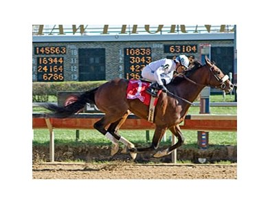American Lion won the 2010 Illinois Derby.