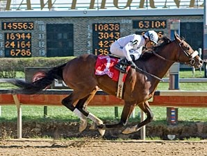 American Lion wins the 2010 Illinois Derby.