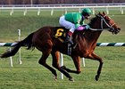 Bsharpsonata Seeks Third Stakes Win