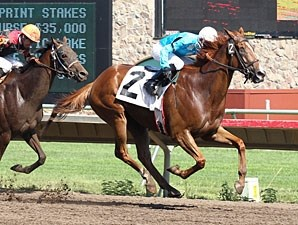 Desert Alley wins the 2012 HBPA Sprint Stakes.