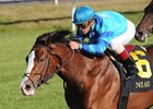 "Get Stormy will try to return to the winner's circle in the Fourstardave.<br><a target=""blank"" href=""http://www.bloodhorse.com/horse-racing/photo-store?ref=http%3A%2F%2Fpictopia.com%2Fperl%2Fgal%3Fprovider_id%3D368%26ptp_photo_id%3D8561817%26ref%3Dstory"">Order This Photo</a>"