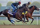 Fed Biz works at Santa Anita 10/27/2013.