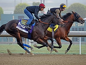 Fed Biz preps for the Breeders' Cup.