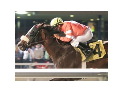 Cherokee Artist posted the first stakes win of his career  when he captured the Presque Isle Mile.