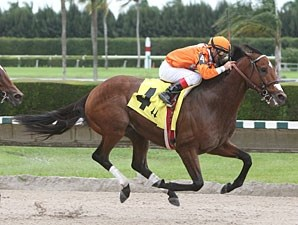 Mad Flatter wins the 2011 Spend A Buck.