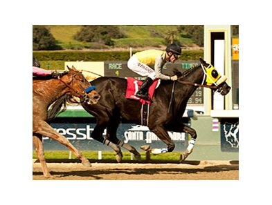 Great Hot and Gary Stevens cannot be caught in the Santa Maria Stakes.