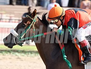 Candy Coded Kisses wins the 2012 Florida Stallion Desert Vixen Division.