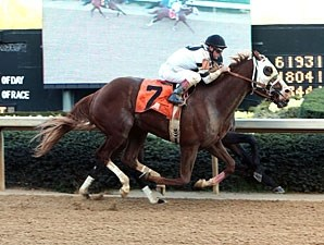 Will Take Charge wins the 2013 Rebel Stakes.