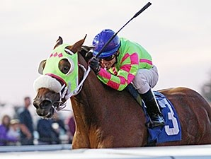 Miss Mischief wins the 2014 H.B.P.A. Stakes.
