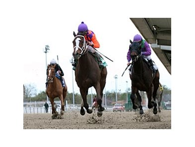 "Summer Applause finishes strong to win the Rachel Alexandra Stakes.<br><a target=""blank"" href=""http://www.bloodhorse.com/horse-racing/photo-store?ref=http%3A%2F%2Fpictopia.com%2Fperl%2Fgal%3Fprovider_id%3D368%26ptp_photo_id%3D9818545%26ref%3Dstory"">Order This Photo</a>"
