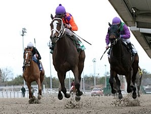 Summer Applause wins the 2012 Rachel Alexandra Stakes.