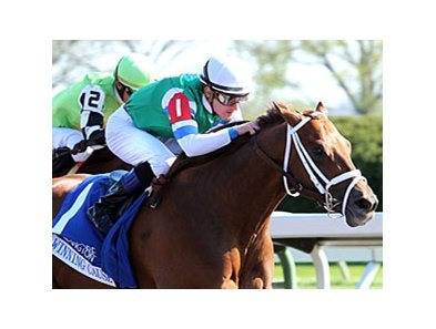 Winning Cause is the 8-5 favorite in the Ontario Derby Sept. 15 at Woodbine.