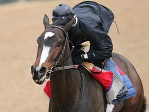 Rachel Alexandra breezes at Oaklawn Park on March 8