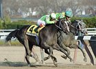 "Disposablepleasure (right) outfights Wildcat's Smile to win the Demoiselle Stakes.<br><a target=""blank"" href=""http://www.bloodhorse.com/horse-racing/photo-store?ref=http%3A%2F%2Fpictopia.com%2Fperl%2Fgal%3Fprovider_id%3D368%26ptp_photo_id%3D9754109%26ref%3Dstory"">Order This Photo</a>"