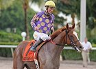 Sing Praises will run in the Florida Sire Unbridled Stakes.