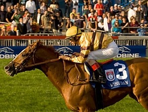 Wise Dan wins the 2012 Woodbine Mile.