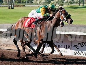 Bailouttheminister wins the 2012 the Sam J. Whiting Memorial Handicap.