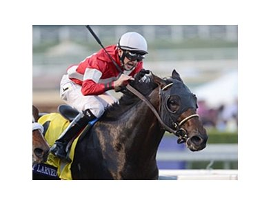 "Fort Larned <br><a target=""blank"" http://photos.bloodhorse.com/BreedersCup/2012-Breeders-Cup/Classic/26128658_j8xsjs#!i=2325558744&k=khNd7p5"">Order This Photo</a>"