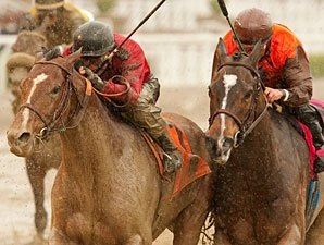 Juniper Pass Takes to Sloppy San Luis Rey