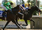 Matt's Broken Vow has been installed as the 9-5 choice in the Canadian Derby (Can-III).