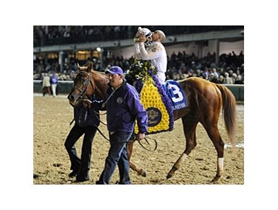 "Auction items include memorablia from Drosselmeyer's Breeders' Cup Classic win.<br><a target=""blank"" href=""http://www.bloodhorse.com/horse-racing/photo-store?ref=http%3A%2F%2Fpictopia.com%2Fperl%2Fgal%3Fprovider_id%3D368%26ptp_photo_id%3D9729975%26ref%3Dstory"">Order This Photo</a>"