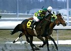Vow to Wager (#6) finished 2nd in the John Battaglia Memorial Stakes, but was placed 1st via disqualification.