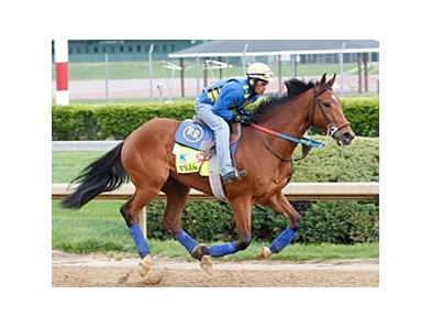 Trainer Rudy Rodriguez gallops Vyjack at Churchill Downs on April 23.