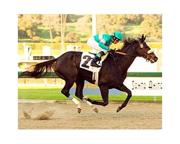 "Zenyatta remains undefeated with an impressive victory in the El Encino.<br><a target=""blank"" href=""http://www.bloodhorse.com/horse-racing/photo-store?ref=http%3A%2F%2Fpictopia.com%2Fperl%2Fgal%3Fprovider_id%3D368%26ptp_photo_id%3D3286869%26ref%3Dstory"">Order This Photo</a>"