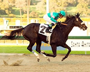 Zenyatta remains undefeated with an impressive victory in the El Encino.