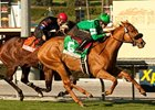 "Caracortado is two-for-two on turf, including a victory in the 2011 Sunshine Millions Turf.<br><a target=""blank"" href=""http://www.bloodhorse.com/horse-racing/photo-store?ref=http%3A%2F%2Fpictopia.com%2Fperl%2Fgal%3Fprovider_id%3D368%26ptp_photo_id%3D9387931%26ref%3Dstory"">Order This Photo</a>"