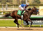 War Academy won his March 15 allowance by 3 1/2 lengths.