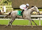 "Stardom Bound takes on 13 in the La Canada.<br><a target=""blank"" href=""http://www.bloodhorse.com/horse-racing/photo-store?ref=http%3A%2F%2Fpictopia.com%2Fperl%2Fgal%3Fprovider_id%3D368%26ptp_photo_id%3D7685666%26ref%3Dstory"">Order This Photo</a>"