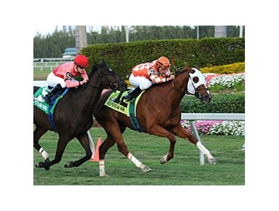 "Presious Passion holds off Quasicobra in the Mac Diarmida Stakes.<br><a target=""blank"" href=""http://www.bloodhorse.com/horse-racing/photo-store?ref=http%3A%2F%2Fpictopia.com%2Fperl%2Fgal%3Fprovider_id%3D368%26ptp_photo_id%3D7790280%26ref%3Dstory"">Order This Photo</a>"