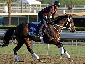 Poseidon's Warrior at Santa Anita 10/29/2012.
