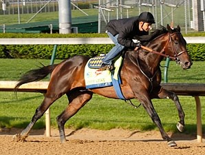 Code West, with Mike Smith, works towards the Kentucky Derby.