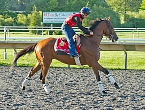 Little Mike - Arlington Park, August 17, 2012.