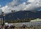 Santa Anita to Install New Turf Course