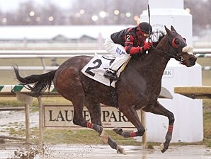 Sweet Goodbye wins the 2010 Conniver Stakes.