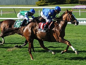 Late-Running Hessonite Takes Beaugay Stakes
